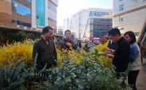 昆明花农生意经:鲜花论斤卖,玫瑰1块一朵,转手涨10倍