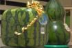 超贵的日本方形西瓜,吃起来一言难尽