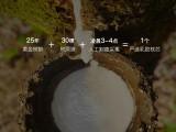 网易严选 泰国天然乳胶枕 史低79元包邮