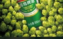 青岛啤酒 经典10度 罐装啤酒 500ml*24听 94元国货大赏价