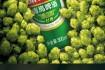 青岛啤酒 经典10度 罐装啤酒 500ml*24听 104元包邮